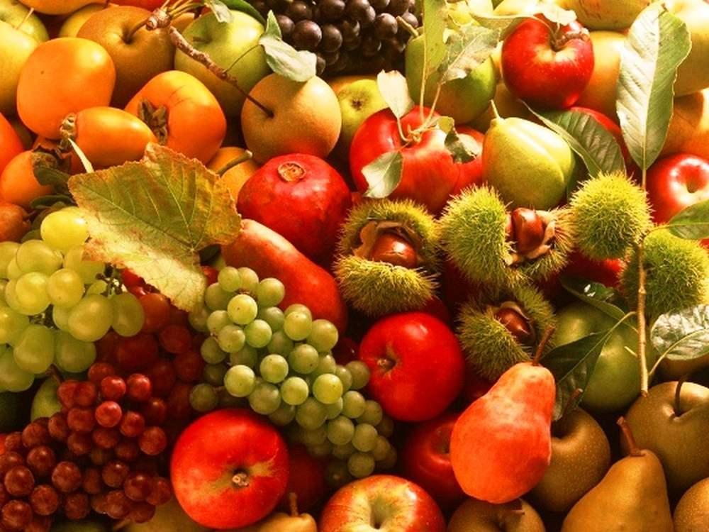 Zöldségek, gyümölcsök jelentősége táplálkozásunkban