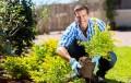 kertészeti pályázat