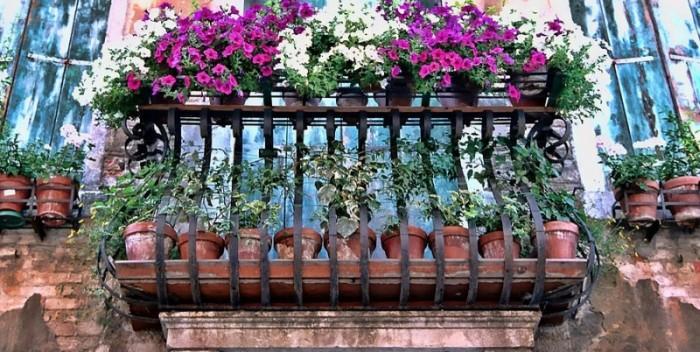 virágok az erkélyen