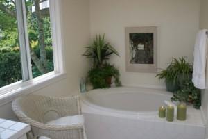 növények a fürdőben