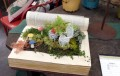 books in the garden