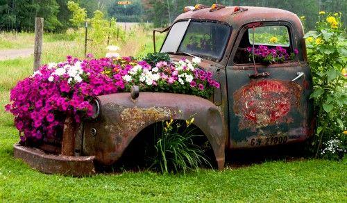 autó virágokkal