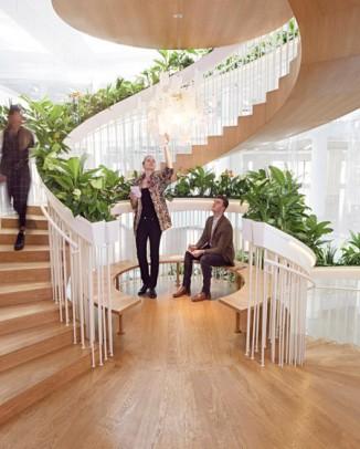 szobanövények a lépcsőn