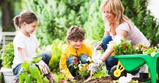 gyerekek a kertben