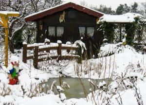 kerti tó télen