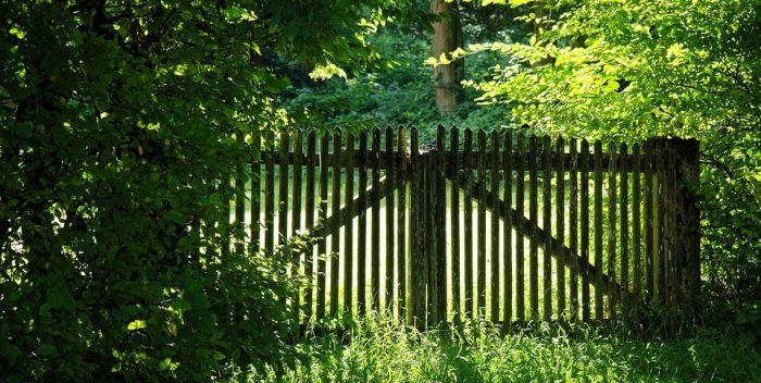 kert, kerítés